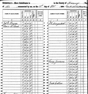 Lewis Bryan Bush Slave 1850 (2)
